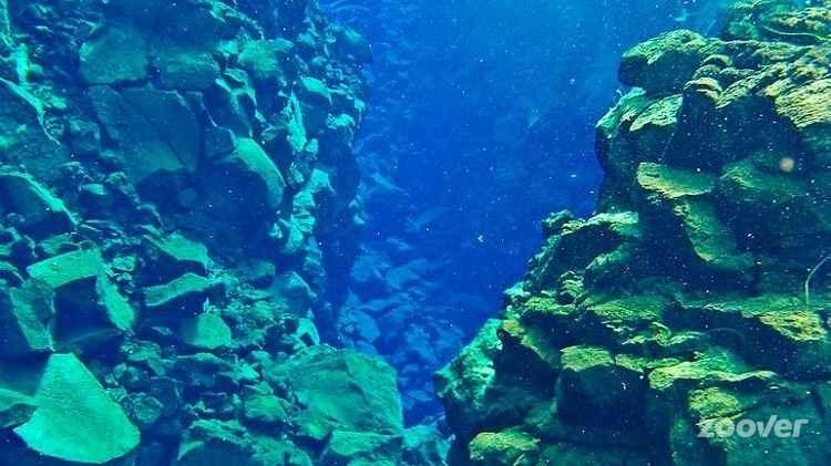 Fissure-Snorkeling-in-Lake-Silfra-in-Thingvellir-N